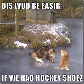 DIS WUD BE EASIR  IF WE HAD HOCKEY SHOEZ