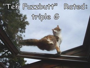 """Teh Fuzzbutt""  Rated: triple G"