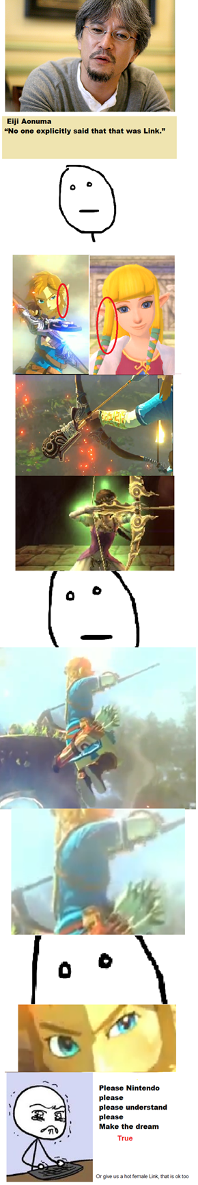 The Legend of... ZELDA?