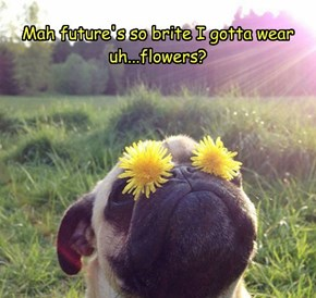 Mah future's so brite I gotta wear  uh...flowers?