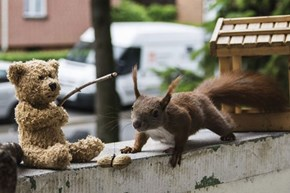 HERE Squirrely, Squirrely, Squirrely!