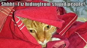 Shhht...I iz hidingfrom stupid people!