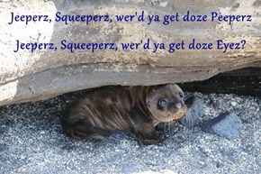 Jeeperz, Squeeperz, wer'd ya get doze Peeperz Jeeperz, Squeeperz, wer'd ya get doze Eyez?