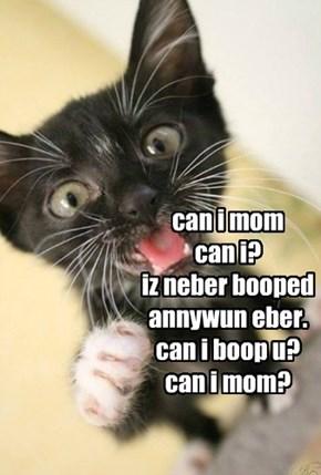 can i mom  can i? iz neber booped annywun eber. can i boop u? can i mom?