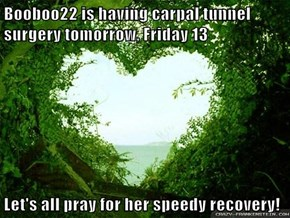 Booboo22 is having carpal tunnel surgery tomorrow, Friday 13  Let's all pray for her speedy recovery!
