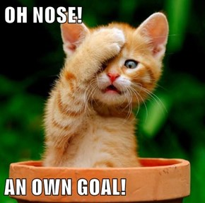 OH NOSE!  AN OWN GOAL!