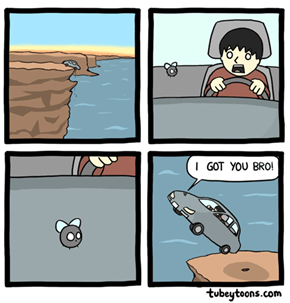 Bro Fly
