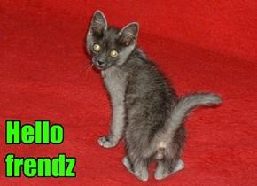 Hello frendz
