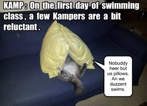 KAMP 2014: Swimming class begins!