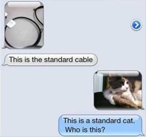 Who You Callin' Standard?!