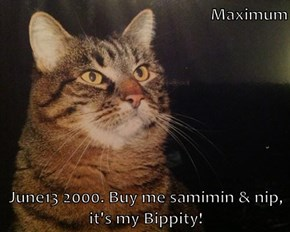 Maximum  June13 2000. Buy me samimin & nip, it's my Bippity!