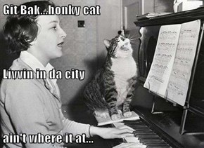 Git Bak...honky cat Livvin in da city ain't where it at...