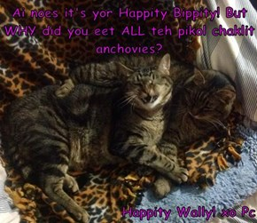 Ai noes it's yor Happity Bippity! But WHY did you eet ALL teh pikol chaklit anchovies?  Happity Wally! xo Pc