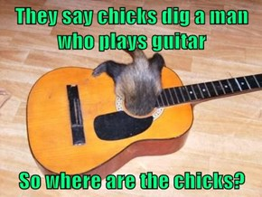 They say chicks dig a man who plays guitar  So where are the chicks?