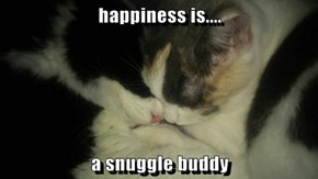 happiness is....  a snuggle buddy