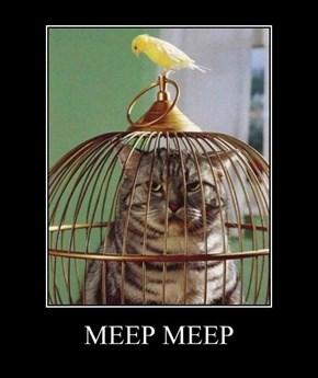 MEEP MEEP
