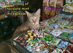 A small bag of chocolate-mint mice please.