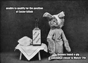 unable to qualify for the position of Easter kitteh
