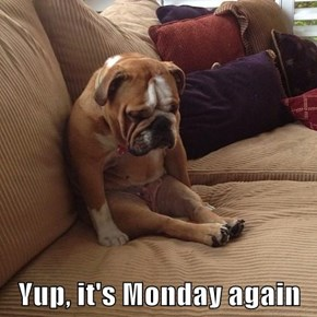 Yup, it's Monday again