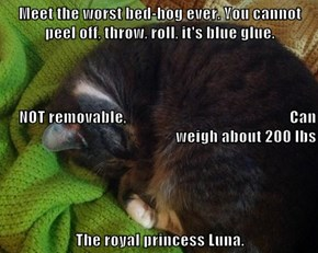 Meet the worst bed-hog ever. You cannot peel off, throw, roll, it's blue glue. NOT removable,                                                   Can weigh about 200 lbs The royal princess Luna.