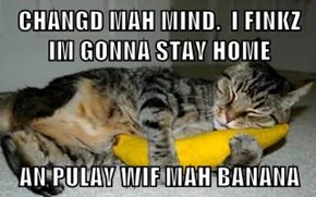 CHANGD MAH MIND.  I FINKZ IM GONNA STAY HOME  AN PULAY WIF MAH BANANA