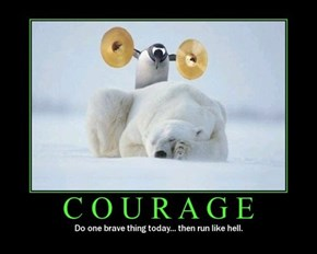 True Courage Is Just Stupid