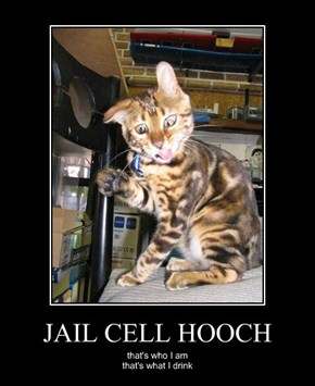 JAIL CELL HOOCH