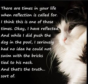 There are times in your life                                                  when reflection is called for.                                                     I think this is one of those                                                      times. Okay,