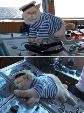 You Take the Helm, I'll Take a Nap