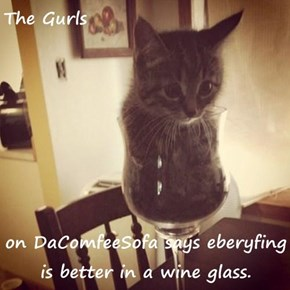 The Gurls  on DaComfeeSofa says eberyfing is better in a wine glass.