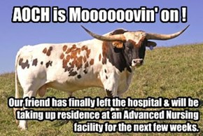 AnOldCowHand has left the hospital & is moving to San Luis Obispo. Address will follow...