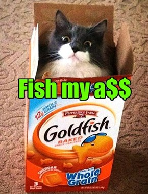 Deez R nawt fishies!