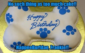 BurfdaeGreets for Foxkatt's Frankie!!