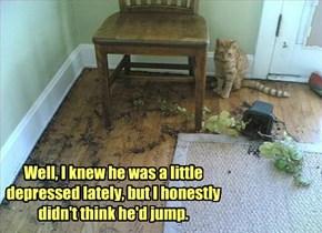 NO, I did not push him!