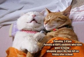 Tuesday, 2:47pm  Parents of KKPS students who have gone to Kamp -  sleeping since the bus left on Friday after school.