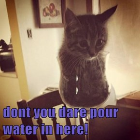 dont you dare pour water in here!