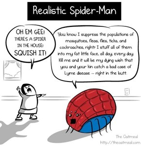 Realistic Spiderman