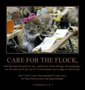 CARE FOR THE FLOCK,