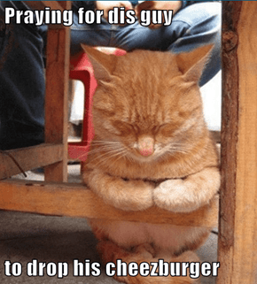 Praying for dis guy  to drop his cheezburger