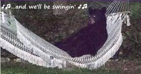 ♪♫...and we'll be swingin' ♪♫