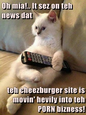 Oh mia!.. It sez on teh news dat   teh cheezburger site is movin' hevily into teh P0RN bizness!