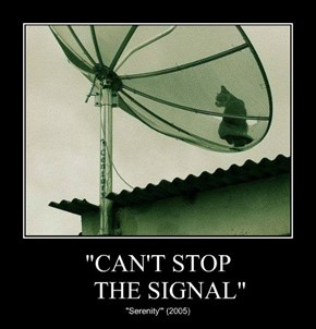 """CAN'T STOP     THE SIGNAL"""