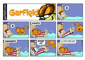Garfield Explains the Motives of Cats in One Sentence