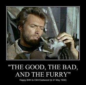 """""""THE GOOD, THE BAD, AND THE FURRY"""""""