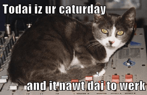 Todai iz ur caturday  and it nawt dai to werk