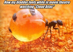 "How my bladder feels while in movie theatre watching ""Cloud Atlas"""