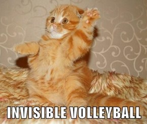 INVISIBLE VOLLEYBALL