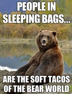 Bears are in Tents...I Mean Intense