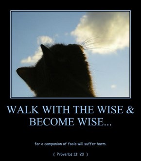WALK WITH THE WISE & BECOME WISE...