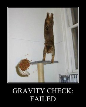 GRAVITY CHECK: FAILED